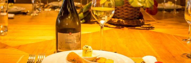 Lançamentos e um festival do vinho