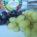 Uvas dulcíssimas, linguiça de Feliz e mais…