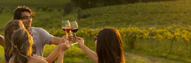 Dia do Vinho e o Bhevino