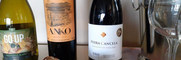 Novos tempos, novos vinhos