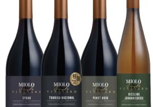 Novos vinhos da Miolo